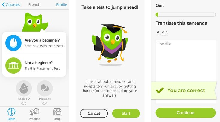 learning languages with Duolingo